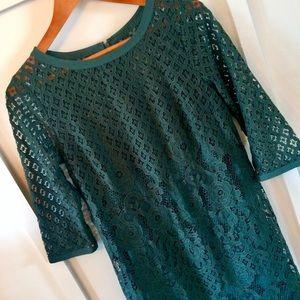 LOFT hunter green lace shift dress